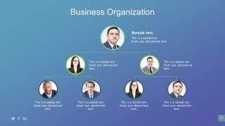 Breakdown Organizational Structure with Pictures