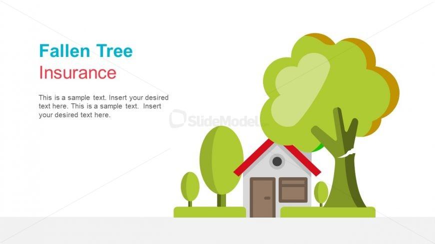 Fallen Tree Damage Insurance Claim