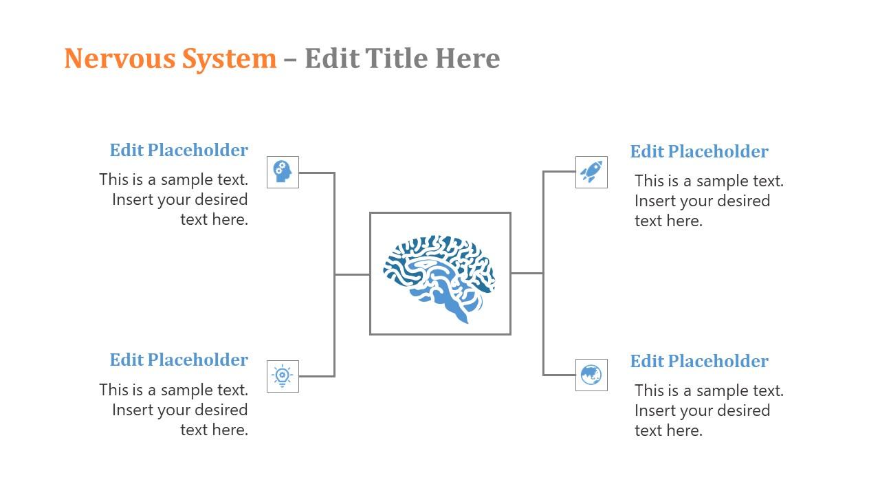 Brain Diagram Concept Nervous System Template