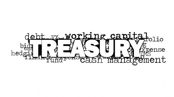 8155-01-treasury-word-cloud-picture-2