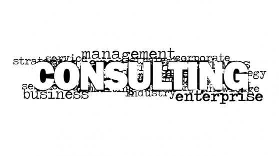 8159-01-consulting-word-cloud-picture-2