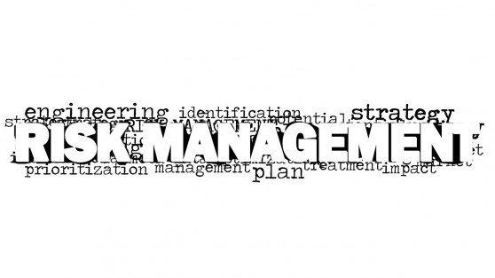 8171-01-risk-management-word-cloud-picture-2