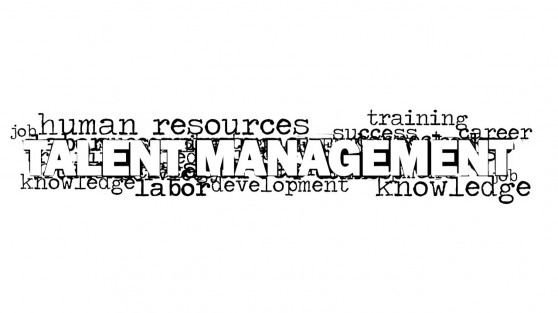 8291-01-talent-management-word-cloud-picture-2