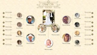 PPT Template Diagram Family Tree