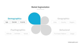 Market Segmentation Demographic PowerPoint