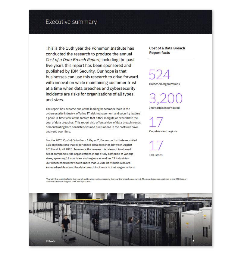 Executive Summary Report Example Presentation PDF